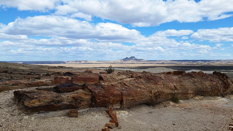 Rancho Patagonico Patagonia Argentina Santa Cruz Chubut Tierra del Fuego Turismo El Piramide Jaramillo Bosque Petrificado Desierto Jurasico Dinosaurios Ruta Tiempo Motos Off Road Experiencia Estancia Campo